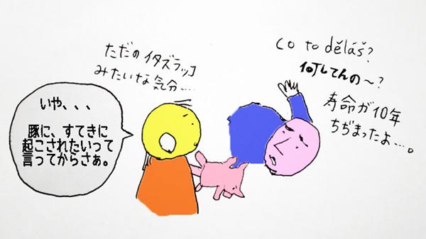 12−2.jpg