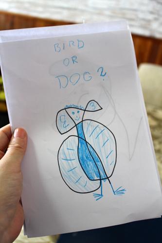 bird or dog.jpg
